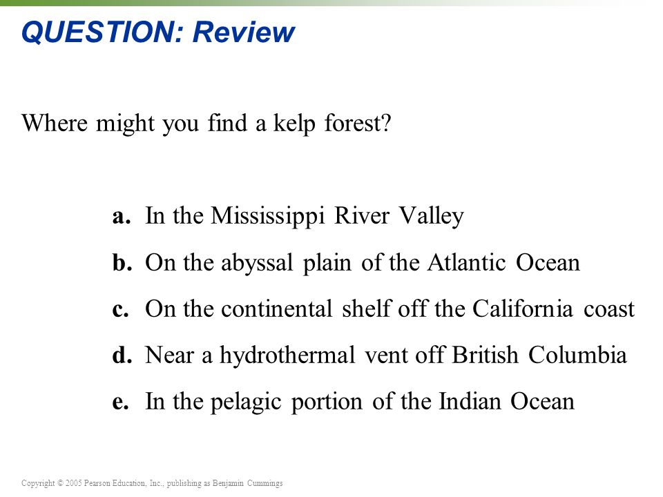 Copyright © 2005 Pearson Education, Inc., publishing as Benjamin Cummings QUESTION: Review Where might you find a kelp forest.