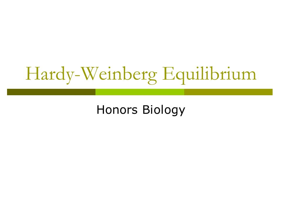 Hardy-Weinberg Equilibrium Honors Biology