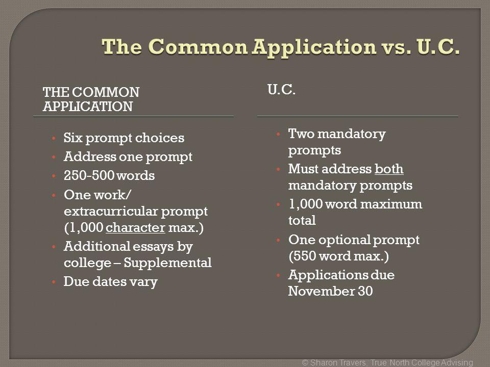 The Optional Statement   Tulane University Admission Blog   Jeff     SlidePlayer     College Application Essays