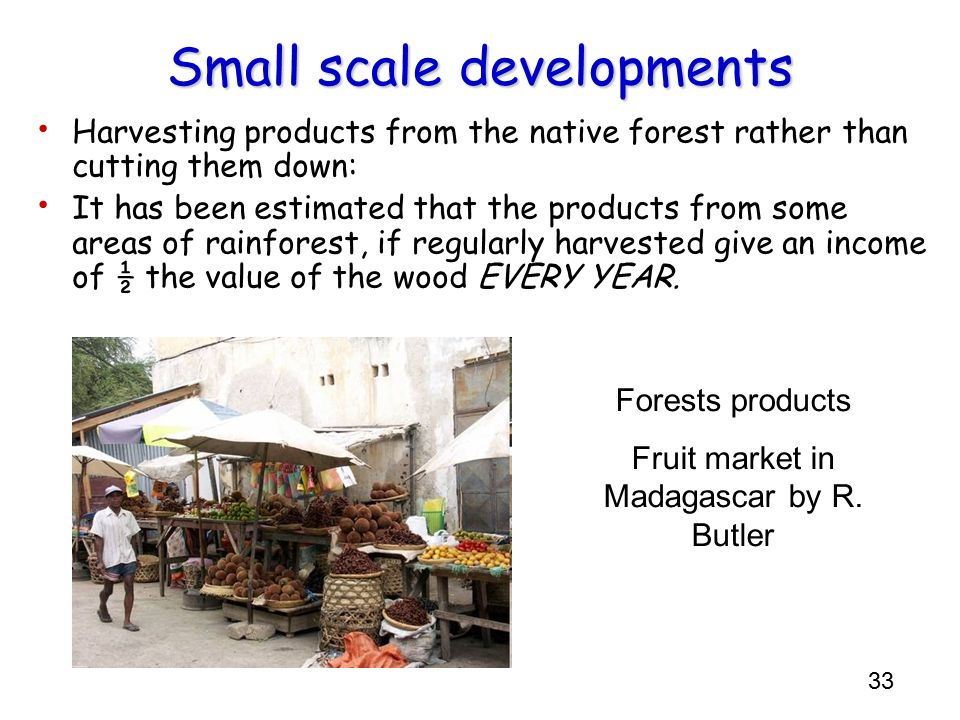 33 Small scale developments Harvesting products from the native forest rather than cutting them down: It has been estimated that the products from som