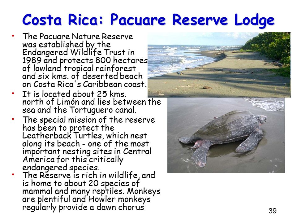 39 Costa Rica: Pacuare Reserve Lodge The Pacuare Nature Reserve was established by the Endangered Wildlife Trust in 1989 and protects 800 hectares of
