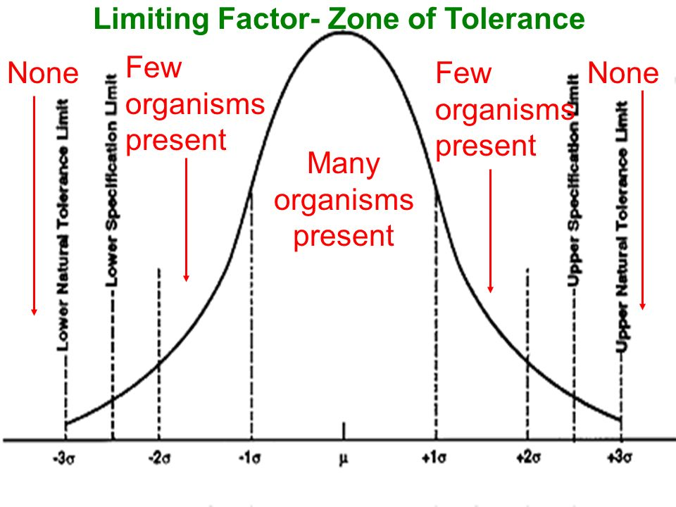 Many organisms present Few organisms present None Limiting Factor- Zone of Tolerance