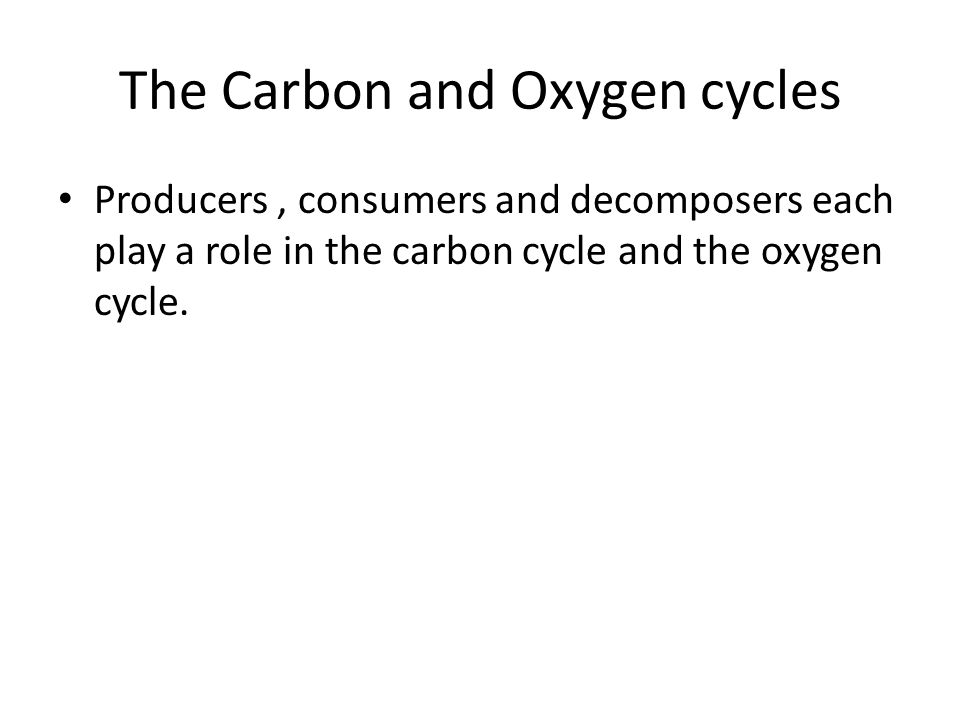 The Carbon and Oxygen cycles Producers, consumers and decomposers each play a role in the carbon cycle and the oxygen cycle.
