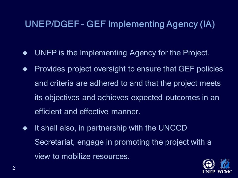 UNEP/DGEF – GEF Implementing Agency (IA)  UNEP is the Implementing Agency for the Project.