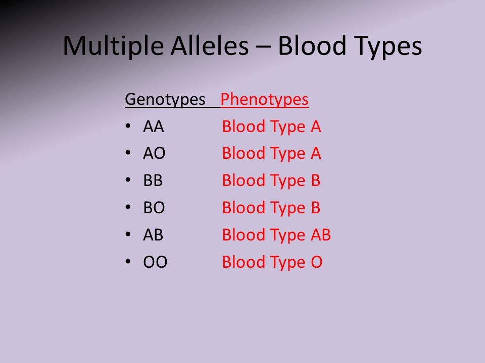 Multiple Alleles Worksheet Templates and Worksheets – Multiple Allele Worksheet
