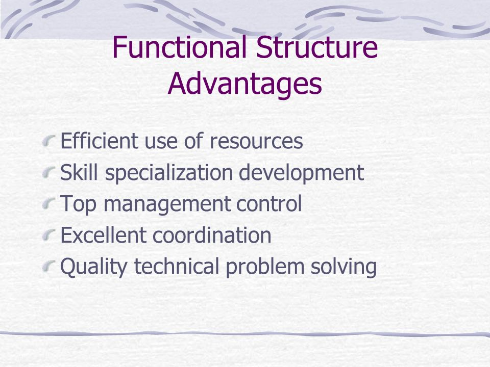 Functional Structure Advantages Efficient use of resources Skill specialization development Top management control Excellent coordination Quality tech