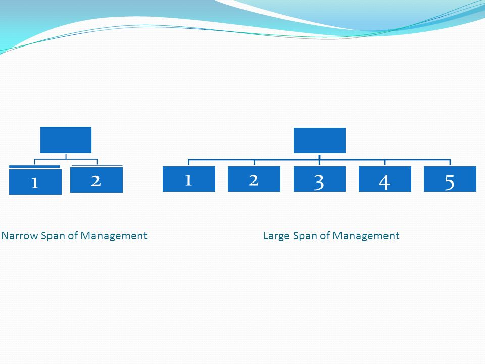 Narrow Span of Management Large Span of Management 12345 1 2