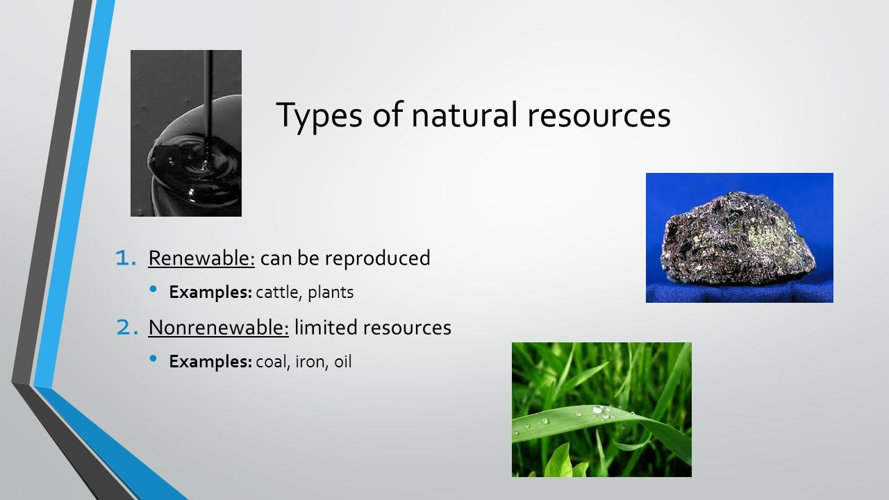 natural resources and management essay
