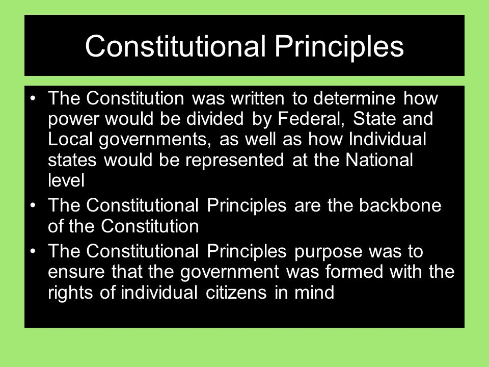 Constitutional Principles The Constitution was written to determine how power would be divided by Federal, State and Local governments, as well as how Individual states would be represented at the National level The Constitutional Principles are the backbone of the Constitution The Constitutional Principles purpose was to ensure that the government was formed with the rights of individual citizens in mind