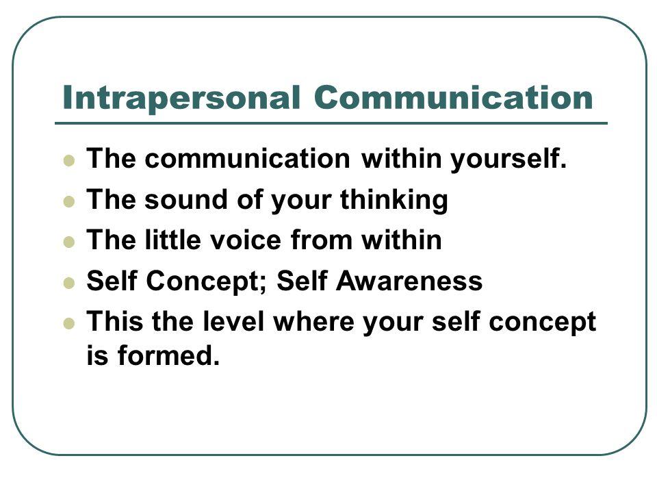 Communication Essay Example