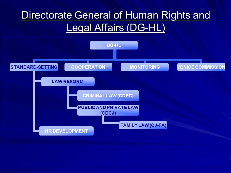Directorate General of Human Rights and Legal Affairs (DG-HL) DG-HL STANDARD- SETTING LAW REFORM CRIMINAL LAW (CDPC) PUBLIC AND PRIVATE LAW (CDCJ) FAMILY LAW (CJ-FA) HR DEVELOPMENT COOPERATIONMONITORING VENICE COMMISSION