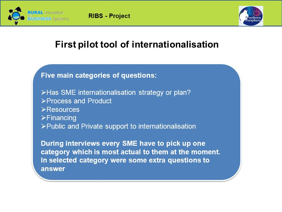 RIBS - Project Five main categories of questions:  Has SME internationalisation strategy or plan.