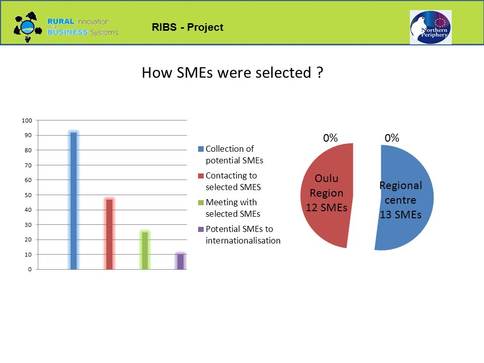 RIBS - Project How SMEs were selected