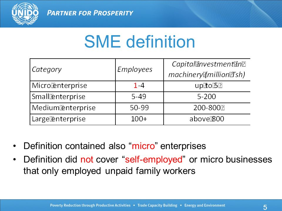 SME definition Definition contained also micro enterprises Definition did not cover self-employed or micro businesses that only employed unpaid family workers 5