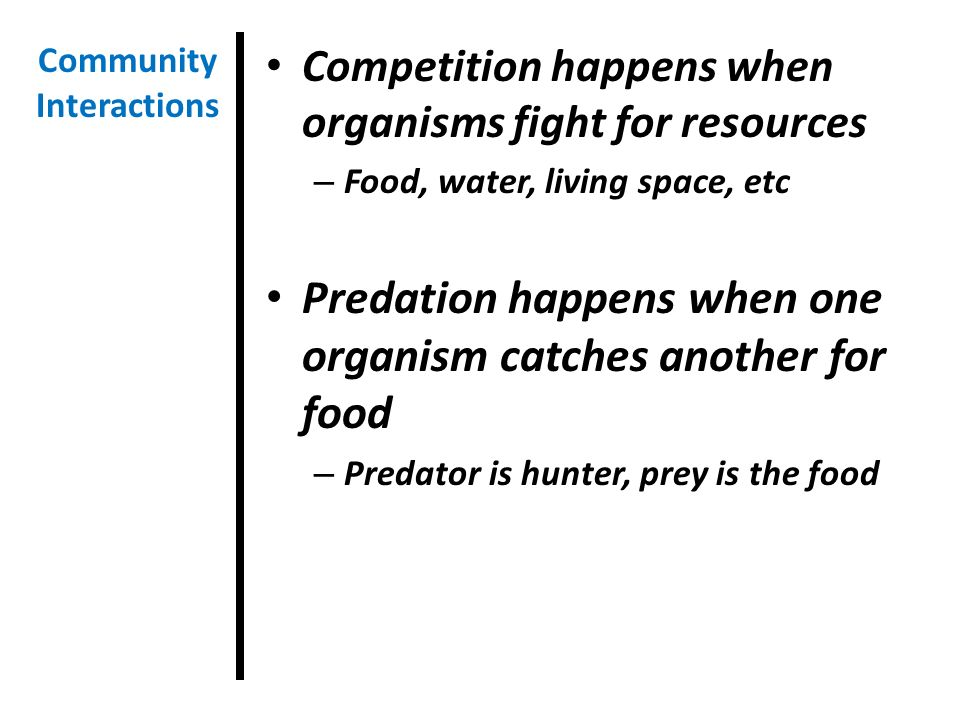 Competition happens when organisms fight for resources – Food, water, living space, etc Predation happens when one organism catches another for food – Predator is hunter, prey is the food Community Interactions