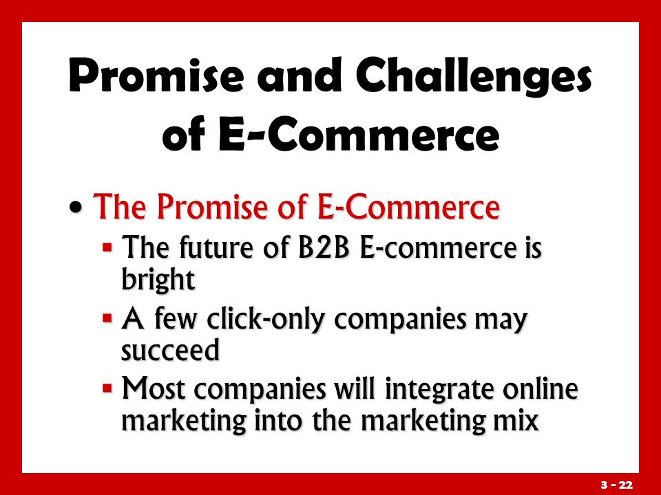 3 - 22 Promise and Challenges of E-Commerce The Promise of E-Commerce The Promise of E-Commerce  The future of B2B E-commerce is bright  A few click-only companies may succeed  Most companies will integrate online marketing into the marketing mix
