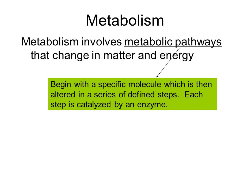 Metabolism Metabolism involves metabolic pathways that change in matter and energy Begin with a specific molecule which is then altered in a series of defined steps.