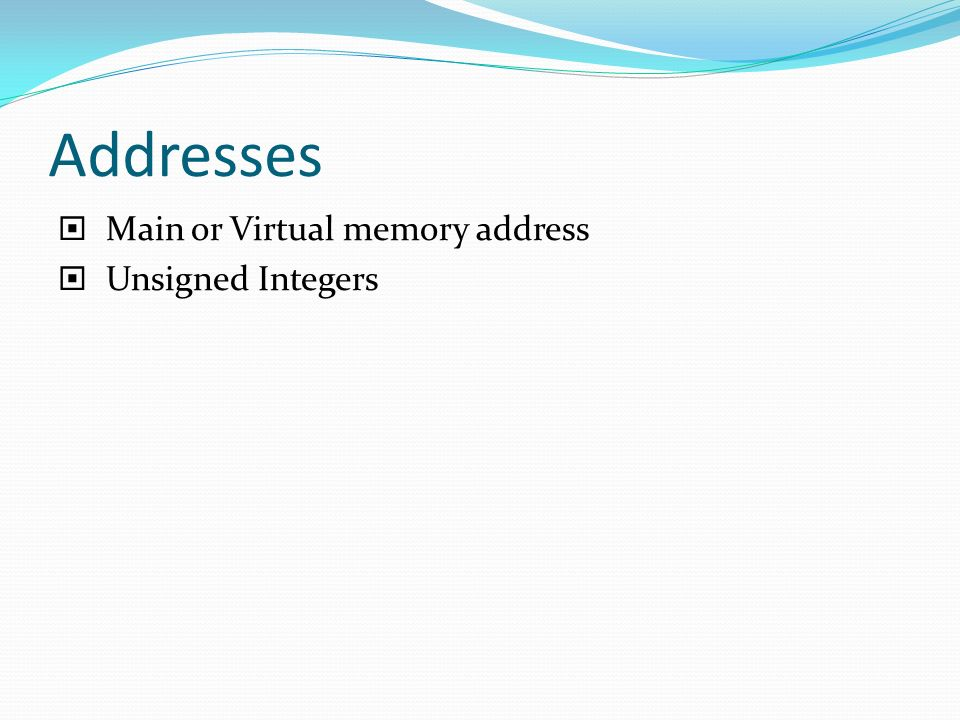 Addresses  Main or Virtual memory address  Unsigned Integers