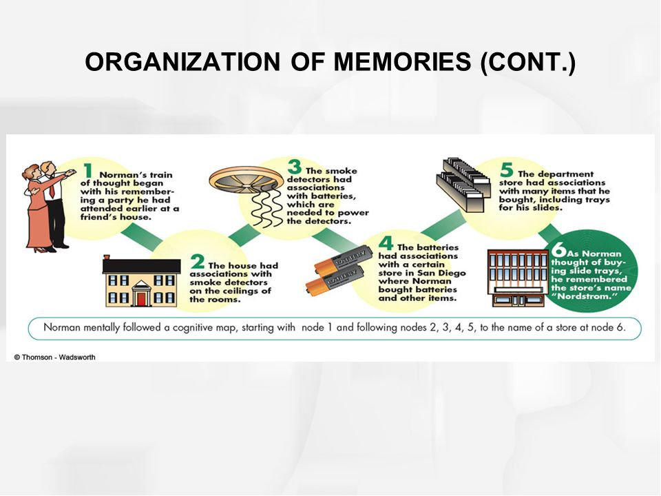 ORGANIZATION OF MEMORIES (CONT.)