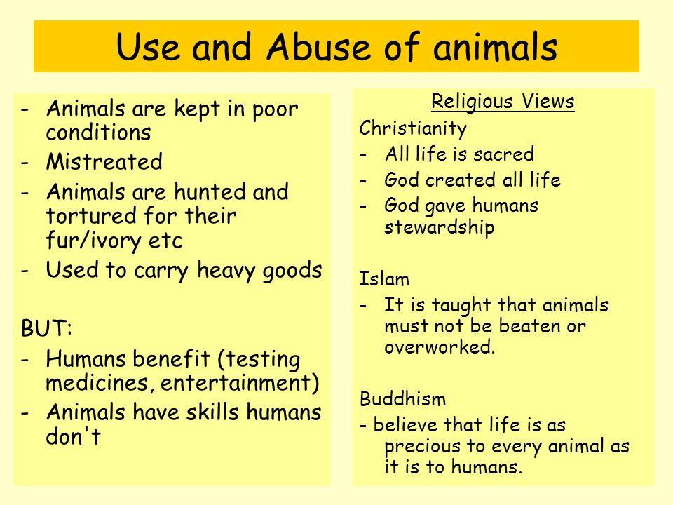 Views on animal testing?