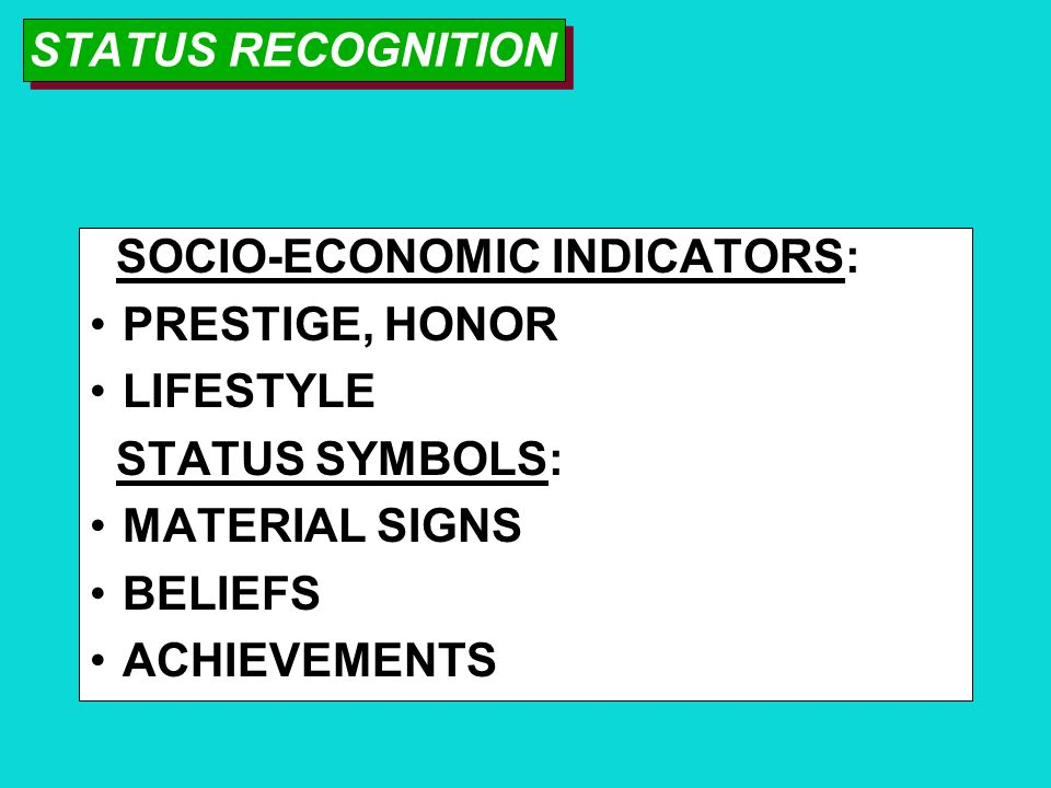 MASTER STATUS DETERMINES PERSON'S SOCIAL POSITION EXAMPLES: BEING RICH, POOR, OCCUPATION, MAJOR ACCOMPLISHMENT, PHYSICAL CONDITION