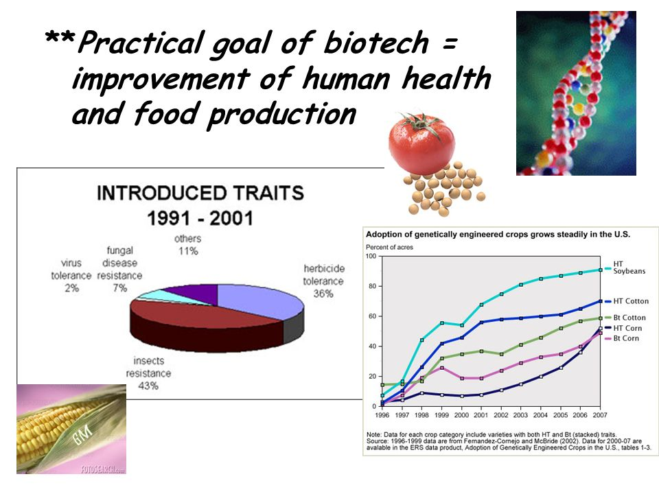 **Practical goal of biotech = improvement of human health and food production
