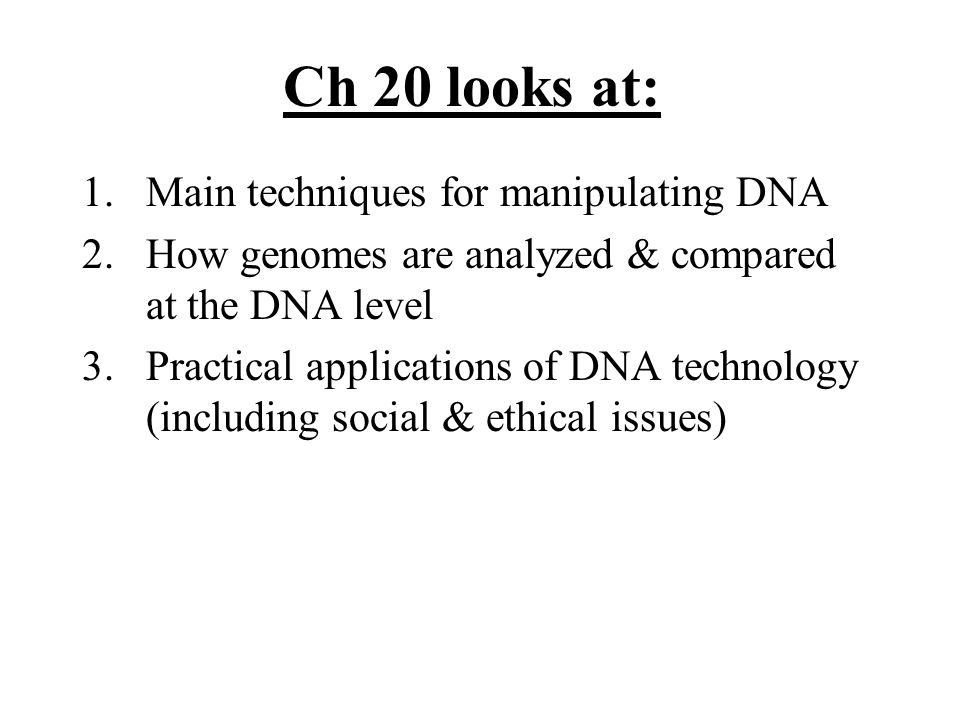 Ch 20 looks at: 1.Main techniques for manipulating DNA 2.How genomes are analyzed & compared at the DNA level 3.Practical applications of DNA technology (including social & ethical issues)