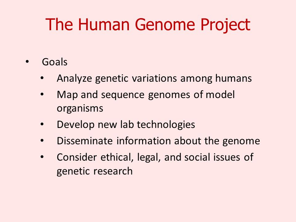 The Human Genome Project Goals Analyze genetic variations among humans Map and sequence genomes of model organisms Develop new lab technologies Disseminate information about the genome Consider ethical, legal, and social issues of genetic research