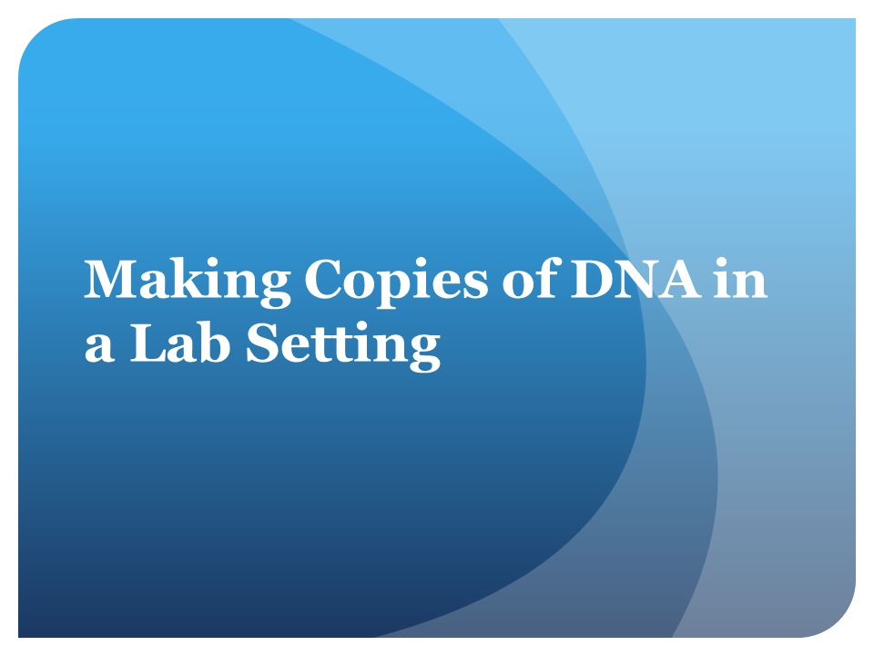 Making Copies of DNA in a Lab Setting