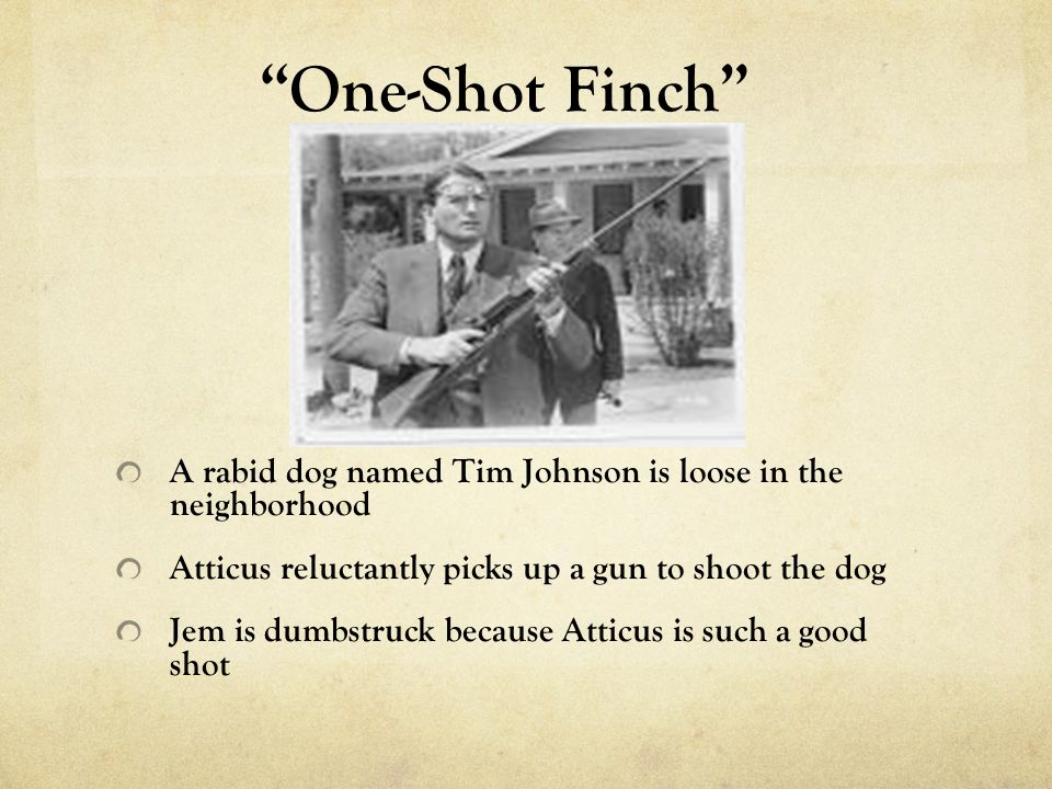 Why is Tim Johnson significant to To Kill a Mockingbird?