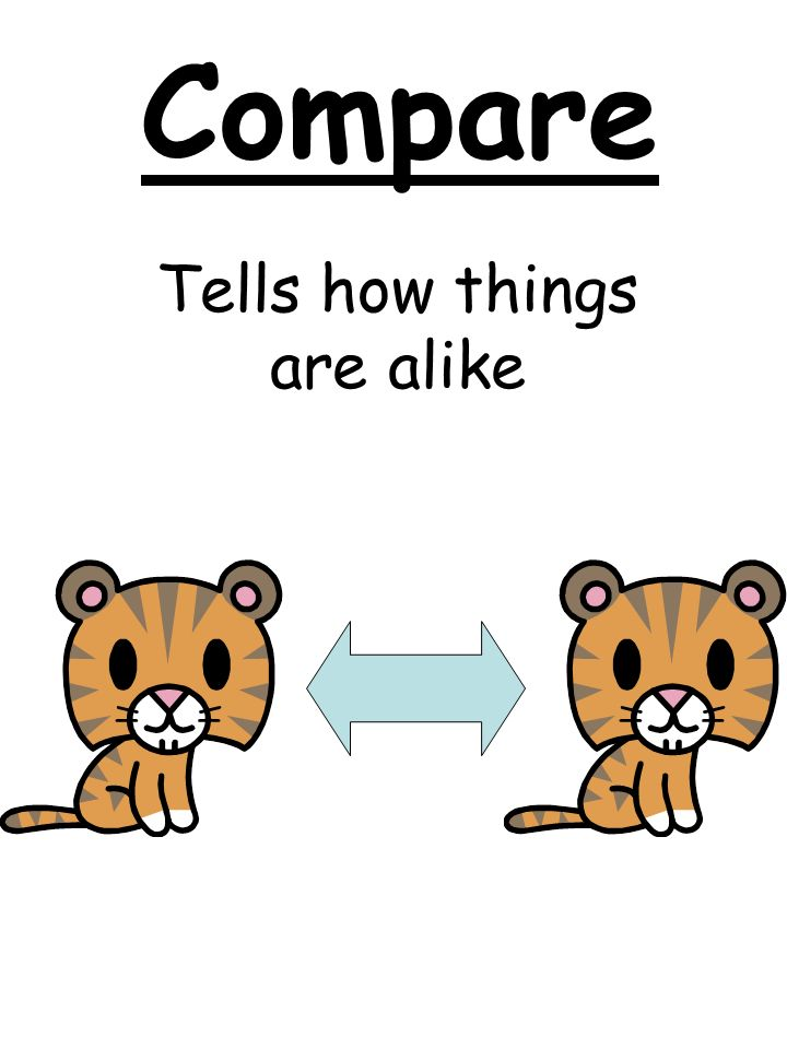 Compare Tells how things are alike