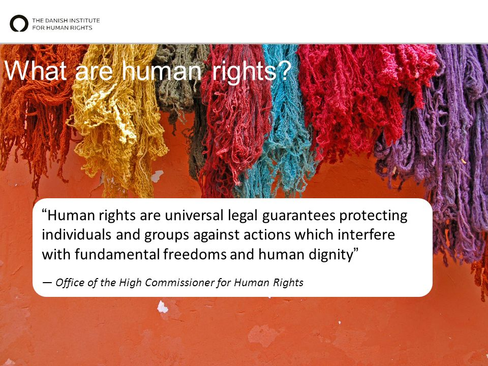 What are human rights.