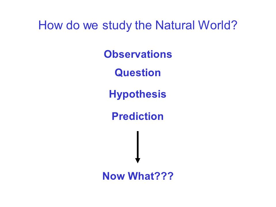 How do we study the Natural World. What is the Scientific Method.