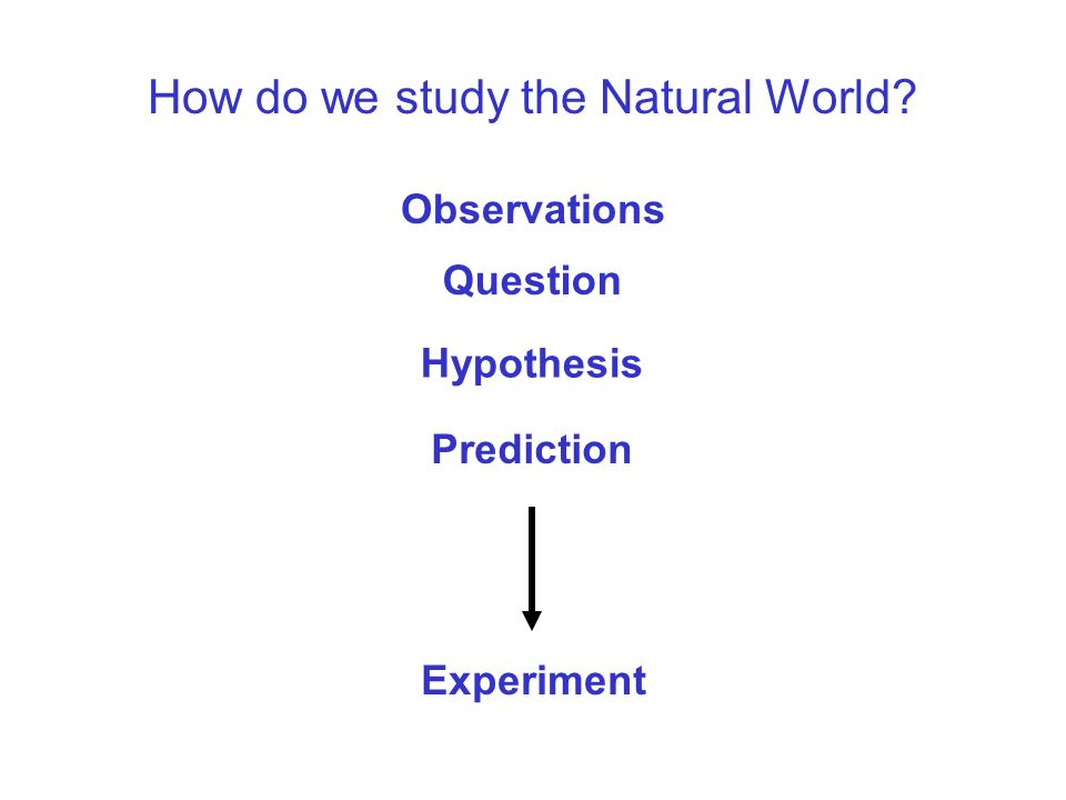 How do we study the Natural World Question Hypothesis Prediction Observations Now What