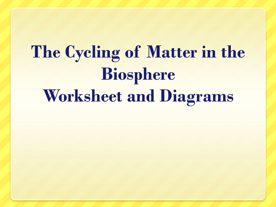 Unit A What is the BIOSPHERE Narrow zone of the planet that – Biosphere Worksheet