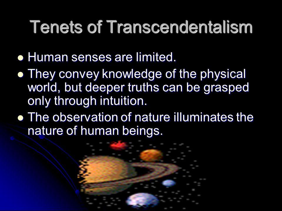 transcendentalism in modern day society essay