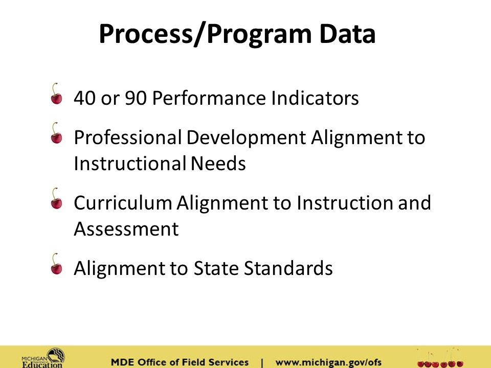 Process/Program Data 40 or 90 Performance Indicators Professional Development Alignment to Instructional Needs Curriculum Alignment to Instruction and Assessment Alignment to State Standards