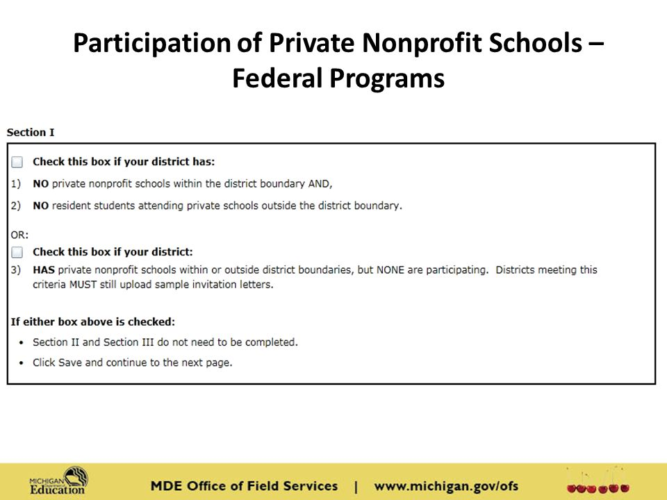 Participation of Private Nonprofit Schools – Federal Programs Content: Screen shot from MEGS Consolidated Application Section 1.