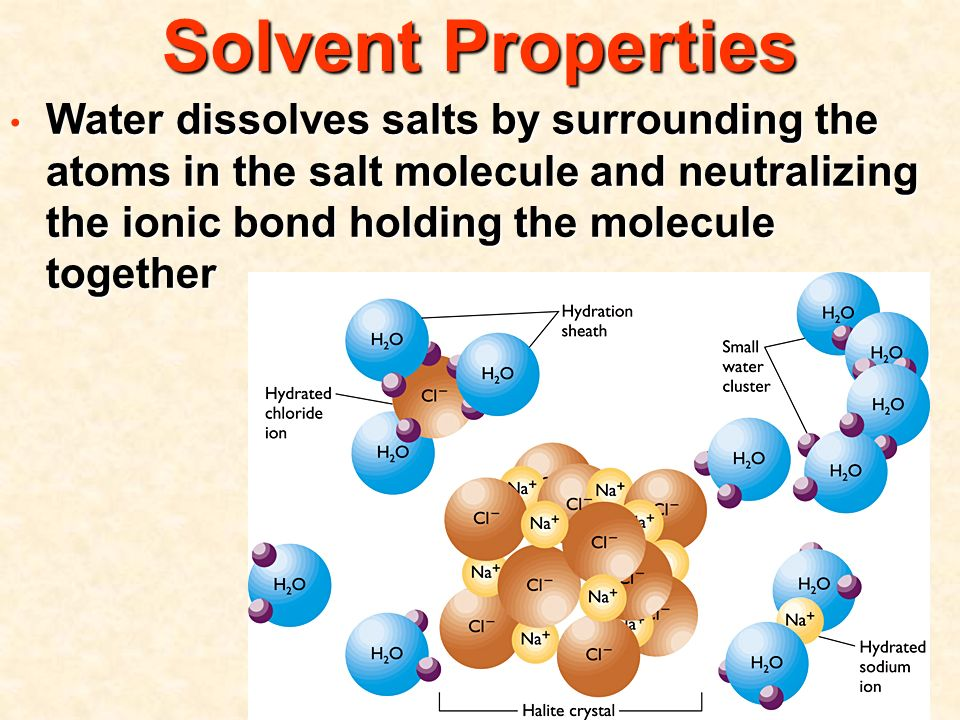 Solvent Properties Water dissolves salts by surrounding the atoms in the salt molecule and neutralizing the ionic bond holding the molecule together Water dissolves salts by surrounding the atoms in the salt molecule and neutralizing the ionic bond holding the molecule together