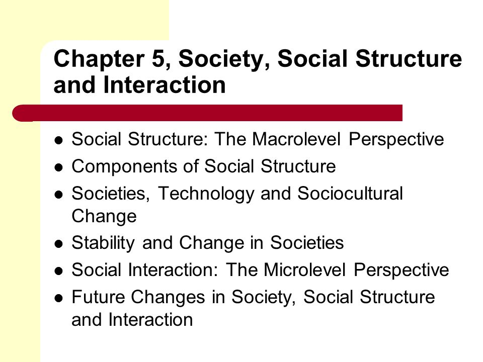 Chapter 5, Society, Social Structure and Interaction Social Structure: The Macrolevel Perspective Components of Social Structure Societies, Technology and Sociocultural Change Stability and Change in Societies Social Interaction: The Microlevel Perspective Future Changes in Society, Social Structure and Interaction