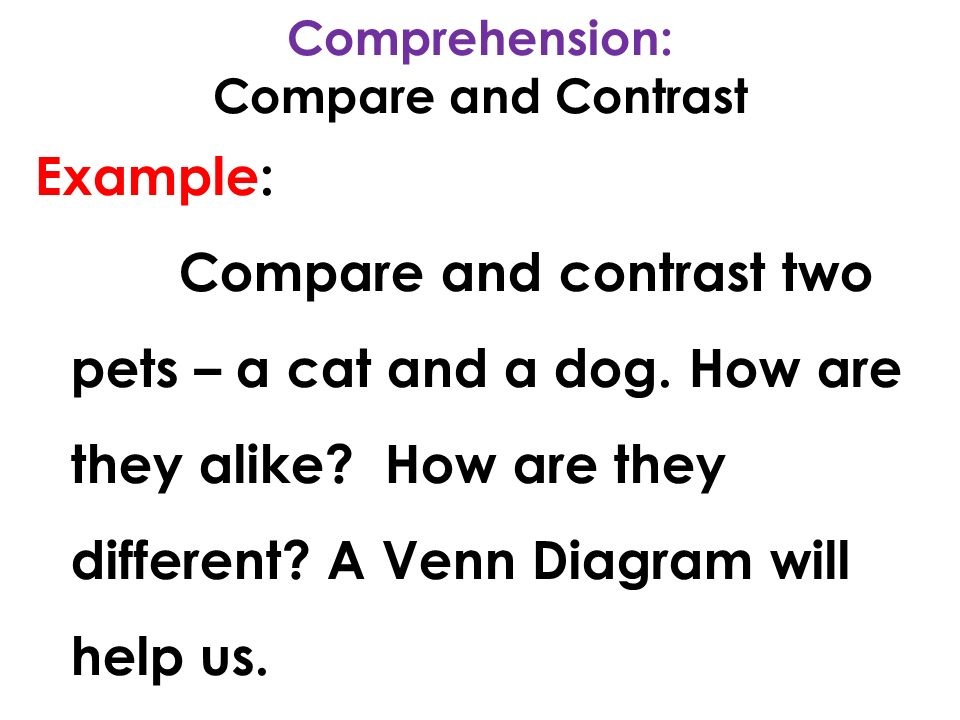 Compare and contrast dogs and cats