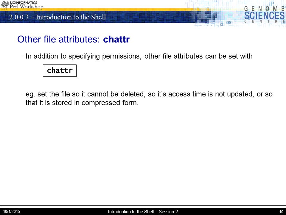 – Introduction to the Shell 10/1/2015 Introduction to the Shell – Session 2 10 Other file attributes: chattr · In addition to specifying permissions, other file attributes can be set with · eg.