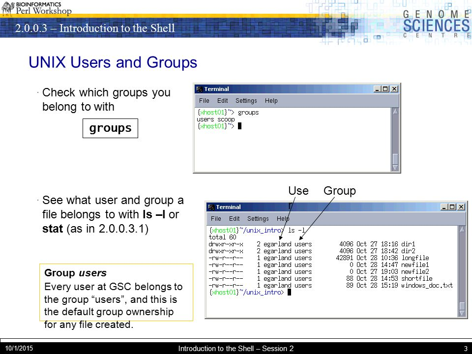 – Introduction to the Shell 10/1/2015 Introduction to the Shell – Session 2 3 UNIX Users and Groups · Check which groups you belong to with · See what user and group a file belongs to with ls –l or stat (as in ) groups Group users Every user at GSC belongs to the group users , and this is the default group ownership for any file created.