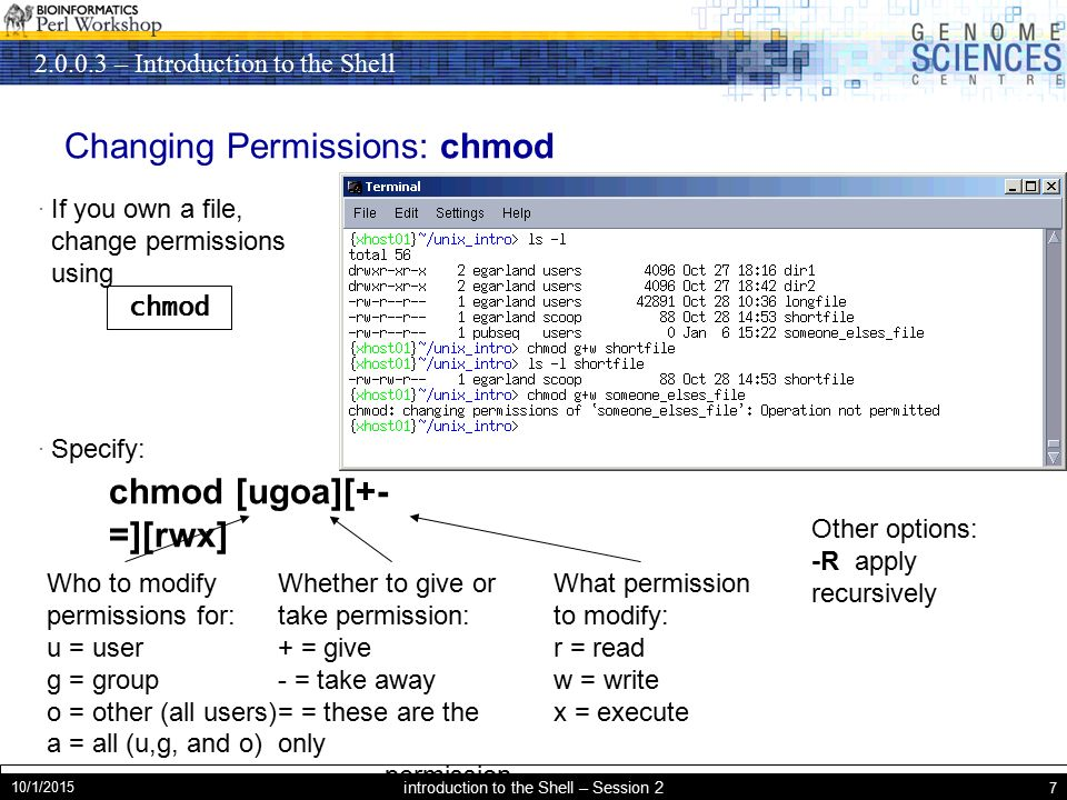 – Introduction to the Shell 10/1/2015 Introduction to the Shell – Session 2 7 Changing Permissions: chmod · If you own a file, change permissions using · Specify: chmod chmod [ugoa][+- =][rwx] Who to modify permissions for: u = user g = group o = other (all users) a = all (u,g, and o) Whether to give or take permission: + = give - = take away = = these are the only permission s What permission to modify: r = read w = write x = execute Other options: -R apply recursively