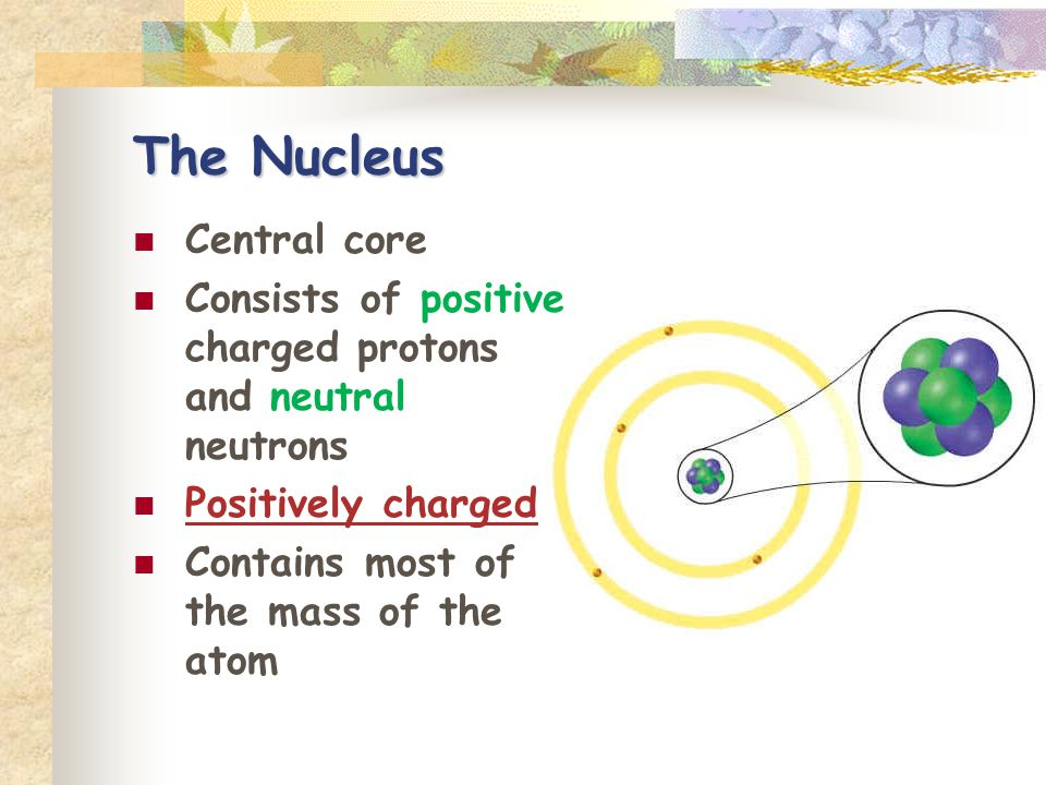 The Nucleus Central core Consists of positive charged protons and neutral neutrons Positively charged Contains most of the mass of the atom