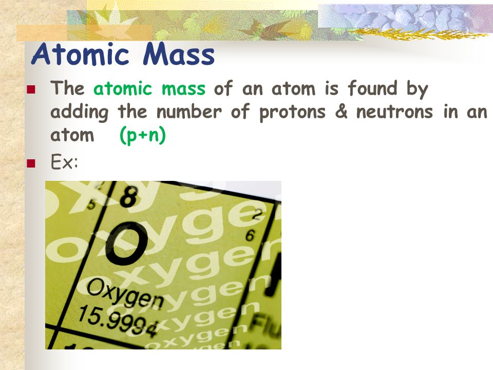 Atomic Mass The atomic mass of an atom is found by adding the number of protons & neutrons in an atom (p+n) Ex: