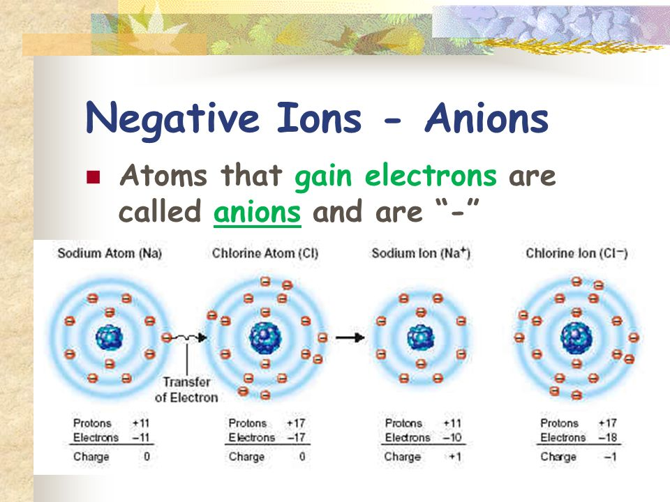 Negative Ions - Anions Atoms that gain electrons are called anions and are -
