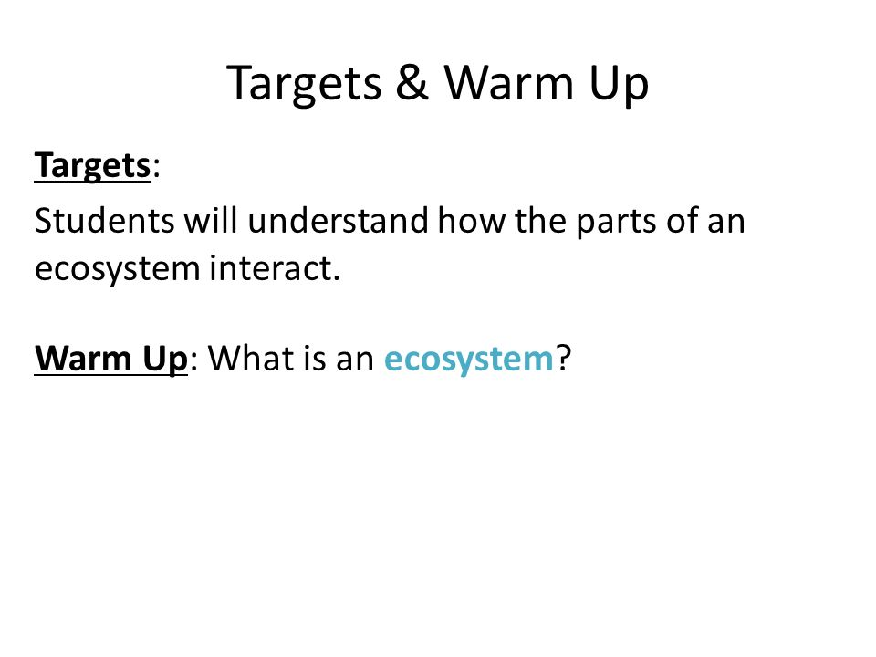 Targets & Warm Up Targets: Students will understand how the parts of an ecosystem interact.