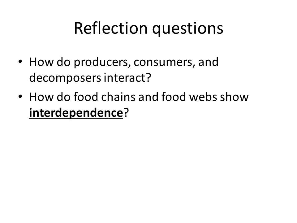 Reflection questions How do producers, consumers, and decomposers interact.