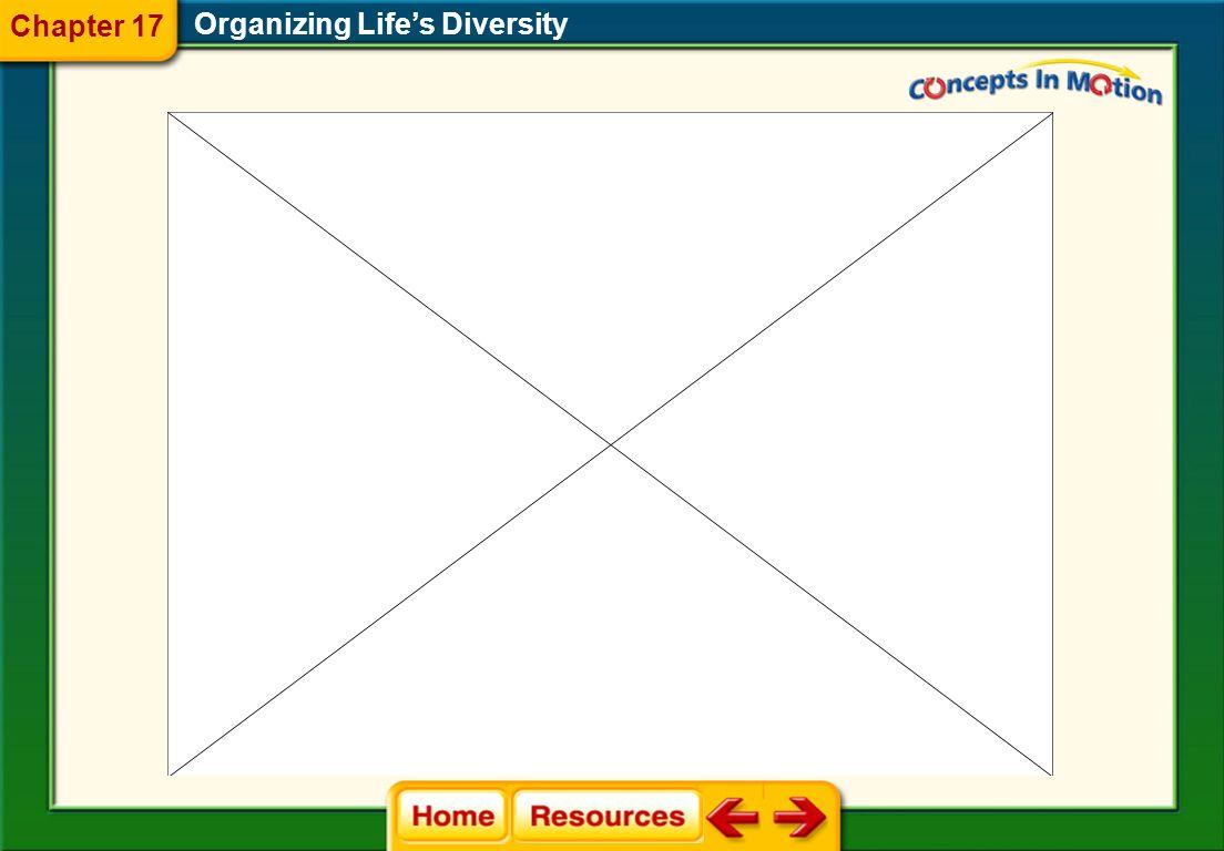 Organizing Life's Diversity Chapter 17